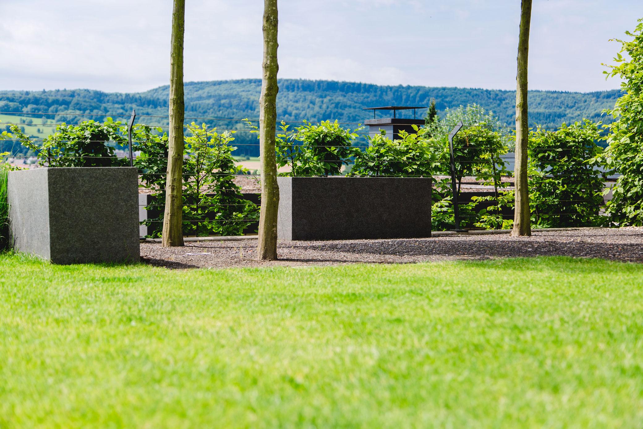 Mauerbau Detmold
